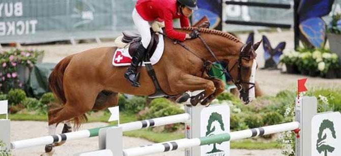 el caballos mas caro del mundo