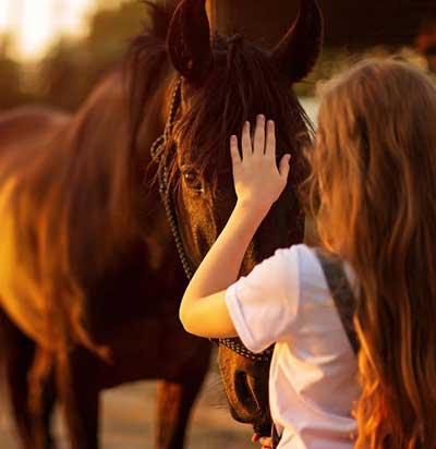 niña calmando caballo